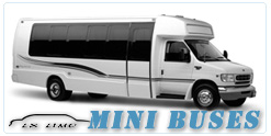 Mini Bus rental in Washington, DC